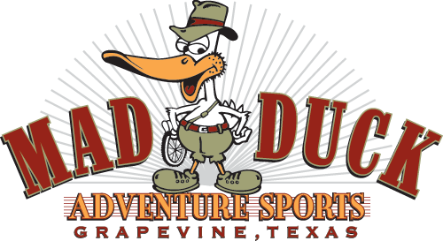 Cartoon Duck Logo